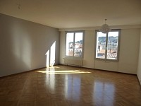 APPARTEMENT T3 A VENDRE - ST ETIENNE BADOUILLERE/ALBERT THOMAS - 104 m2 - 89000 €