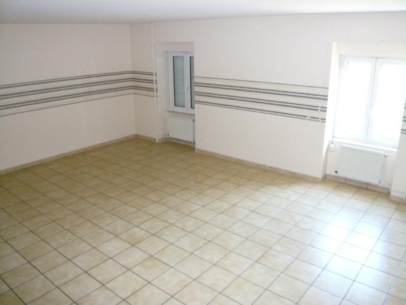 APPARTEMENT T4 A LOUER - TERRENOIRE - 129 m2 - 705 € charges comprises par mois
